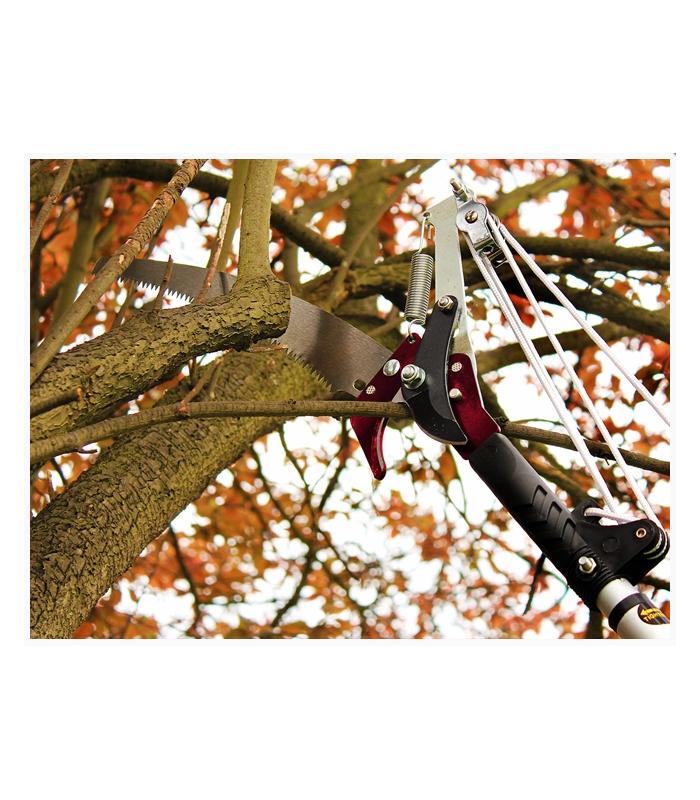 Long Reach Tree Lopper pruner